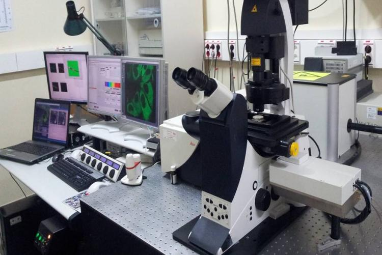 ADVANCED LIGHT MICROSCOPE