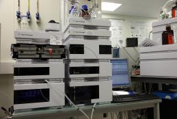 Agilent 1200 Chromatographic system: Reverse Phase (high and low pH), HILIC, SCX.
